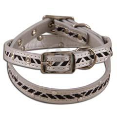Pet collar & Leash