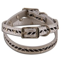 Pet collar & Leash