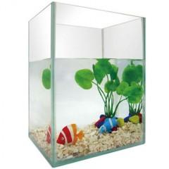 Fish tank-5pc-featured aquarium