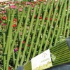 Gardening fences  Fencing Of Bamboo-Like 12048