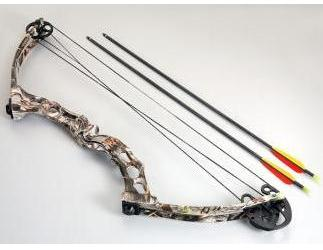 Single Cam Compound Bow CO-011