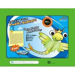 Aquarium science kit-Hatch Your Angel Shrimp