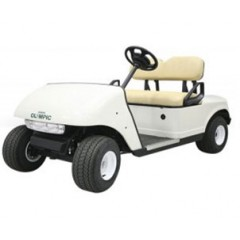 Golf Car GC2100