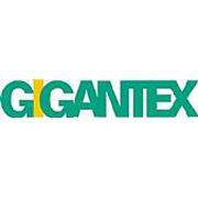 Gigantex Composite Technologies Co., Ltd. 航翊科技股份有限公司