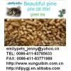 sell Pine Cat Litter,Activated Carbon Pine Cat Litter,wood bedding&litter,natural wood pellet beddin