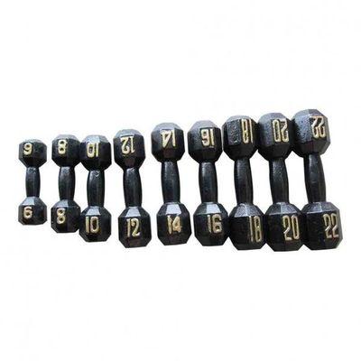 Golden Number Dumb Bell