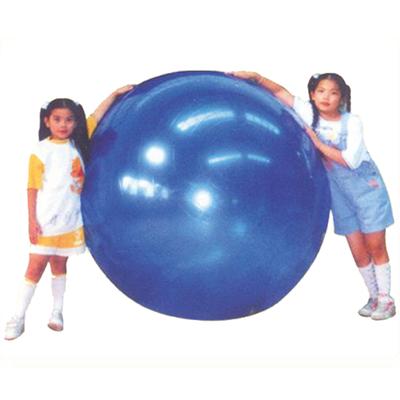 Rhythm Ball  GYM45-120CM
