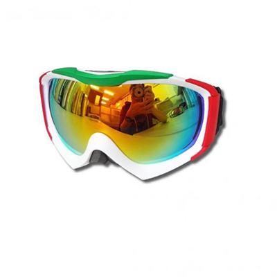 Ski Goggles SP208