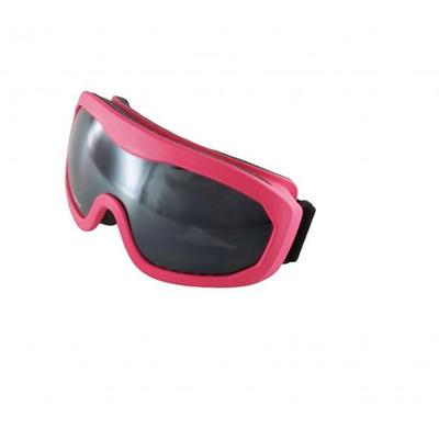 Ski Goggles SP117