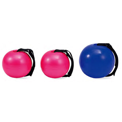 Trainer Ball / Weight Ball