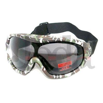 Ski goggles-adult WS-G0110