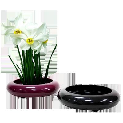 L120 Narcissus Round Pot