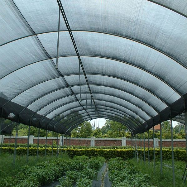 Agriculture Netting / Privacy Screen AG-NET