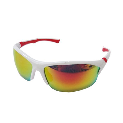 Sports Sunglasses 0251