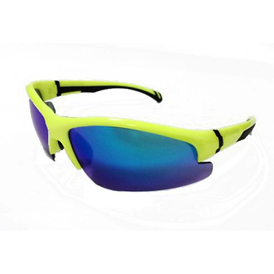 Sunglasses 0253