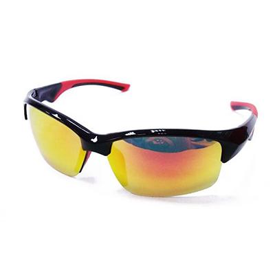 Sunglasses 0295