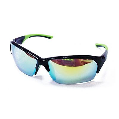 Sunglasses 0296
