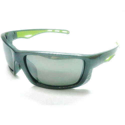 Sunglasses 10024