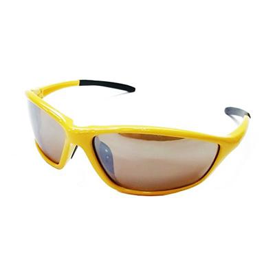 Sunglasses 10032