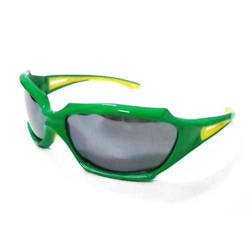 Sunglasses 2970