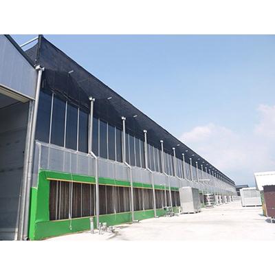 Lightweight Glass Skylight Greenhouse