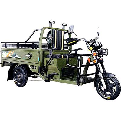 Electric Transportation Vehicle BLM-302