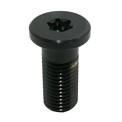 Titanium Screw PVD Black