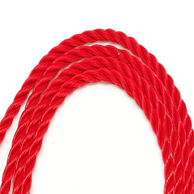 Polyster Rope 60102