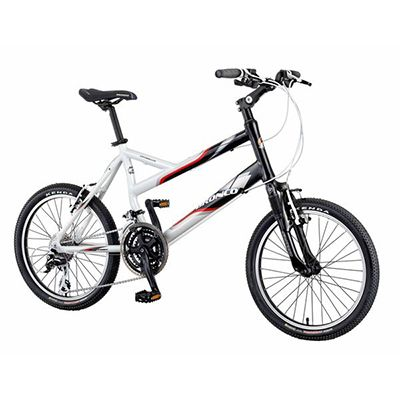 BRONCO COMPACT BIKE - CITYROLLER RB-932