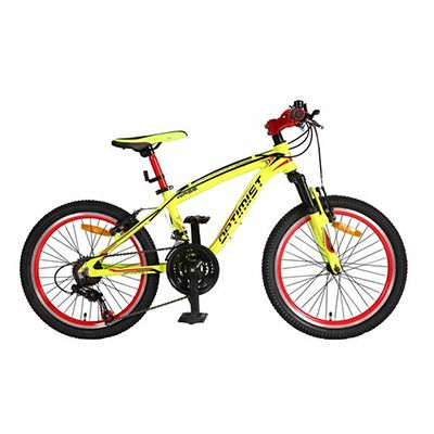 "Mountain Bike - 20""WIRES"