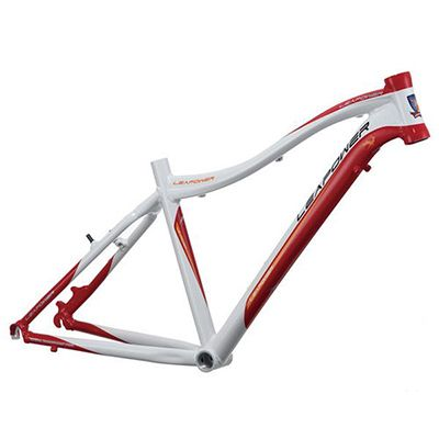 Bicycle MTB Frame S-D