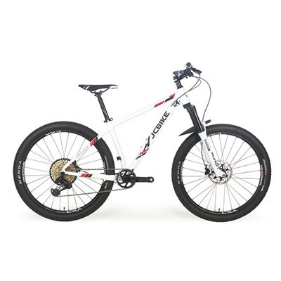 MOUNTAIN BIKE  [Archer] SRAM  XX1  12-SP