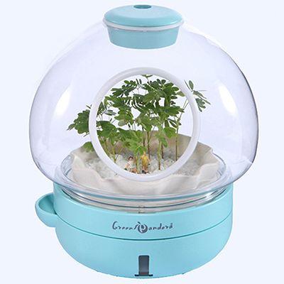 Desktop Planter-2