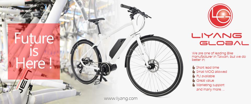 Liyang Global Ltd.  利宇國際有限公司