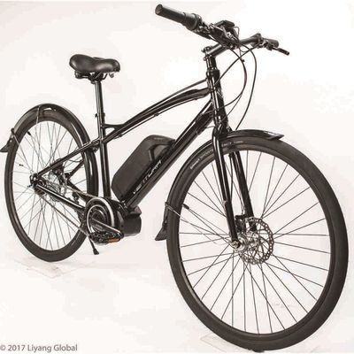 Electric Bicycles e-Sport 8
