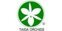 Taida Orchids / Taida Horticultural Co., Ltd.  展壯台大蘭園 (展壯園藝股份有限公司)