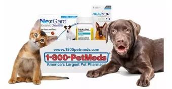 Chewy、沃爾瑪進入美國寵物藥市場