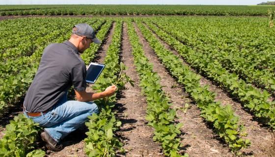 在人工智慧發展下的農業變革
