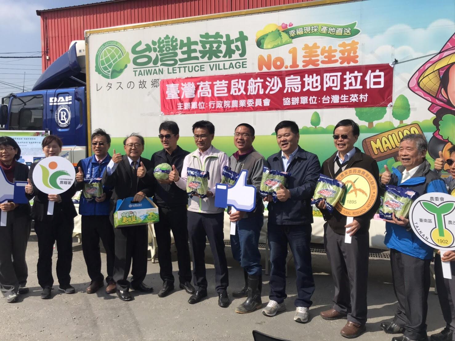 突破長途運輸限制 臺灣萵苣外銷沙烏地阿拉伯開拓新興市場