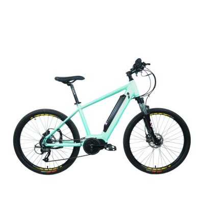 E-bike PSES-C-02