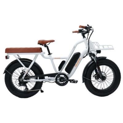 E-bike PSES-CO-FO