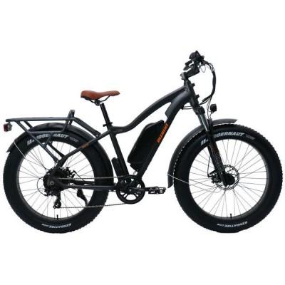 E-bike PSES-CO-FI